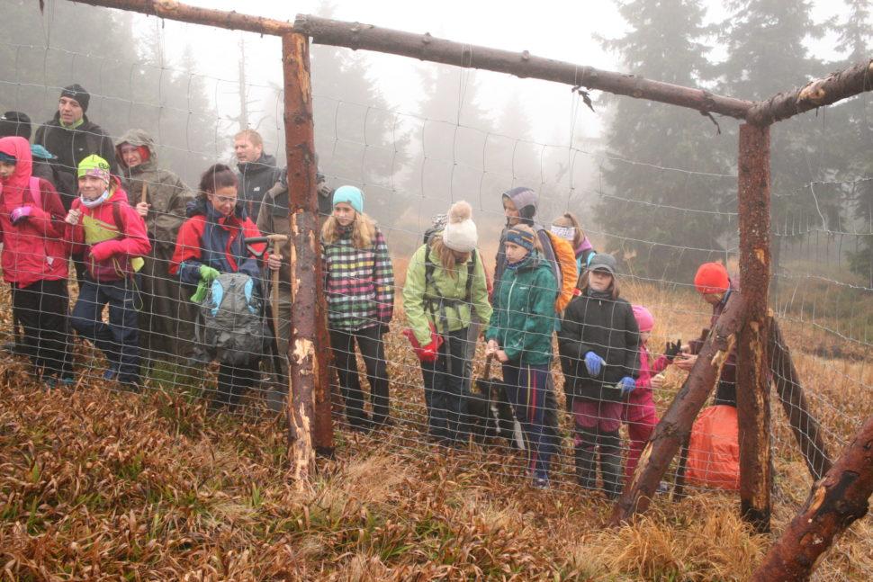 pomáháme svýsadbou lesa